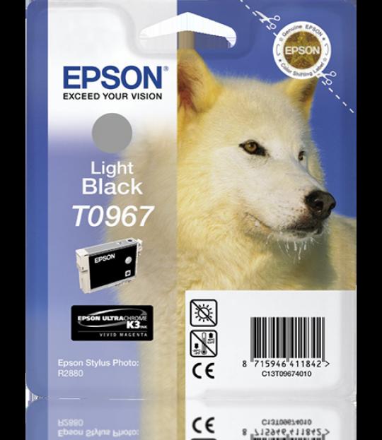 Epson Light Black R2880