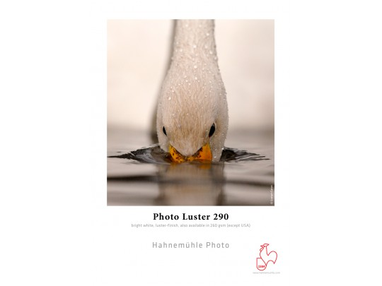 Photo Luster 290gsm