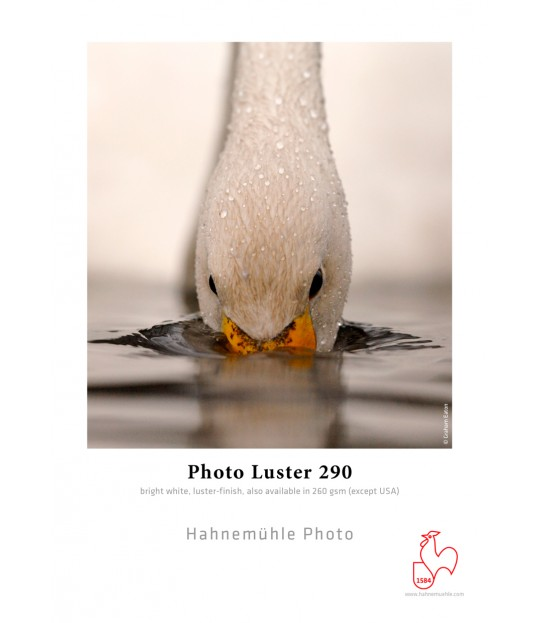 HM_Photo Luster 260, 60